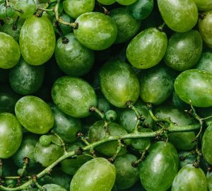 Grapes used for Grape Seed Oil