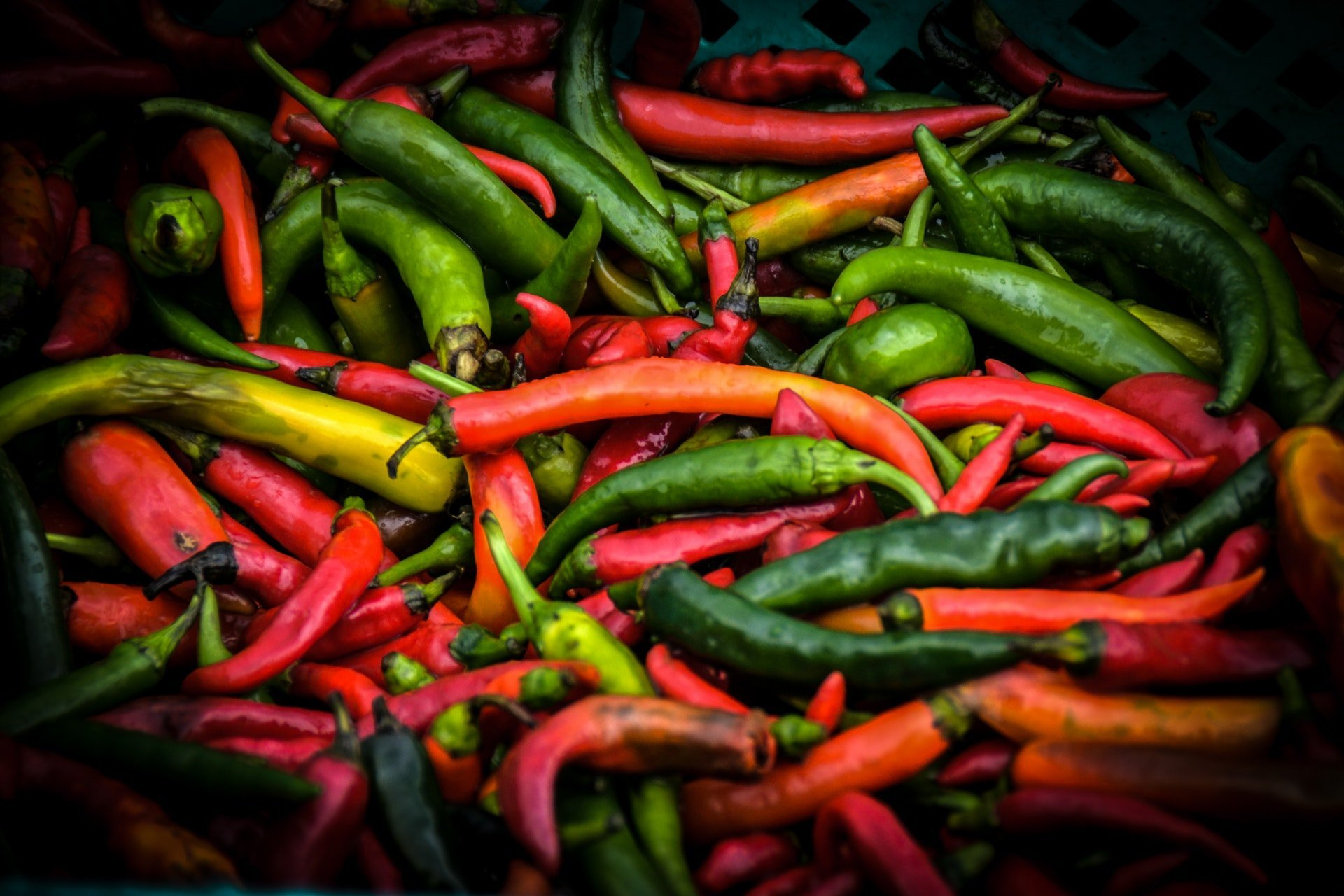 bunch of red and green chili peppers